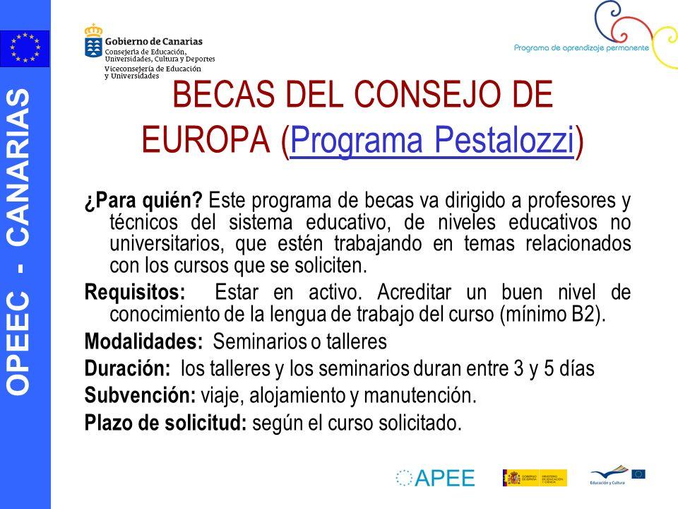 BECAS DEL CONSEJO DE EUROPA (Programa Pestalozzi)