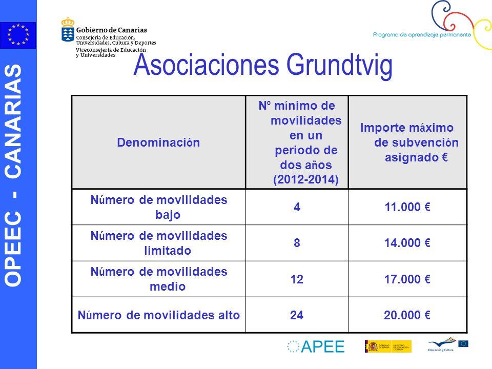 Asociaciones Grundtvig