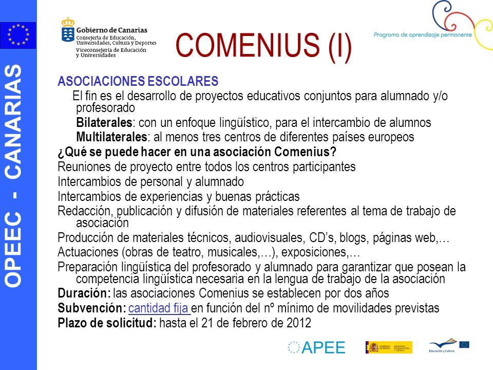 COMENIUS (I) ASOCIACIONES ESCOLARES