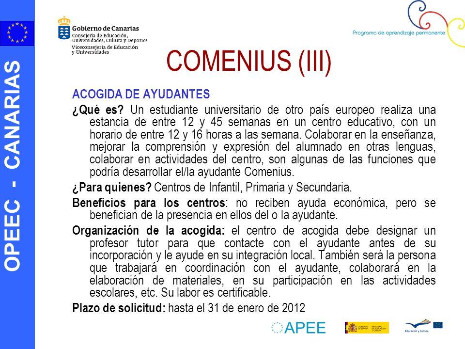 COMENIUS (III) ACOGIDA DE AYUDANTES