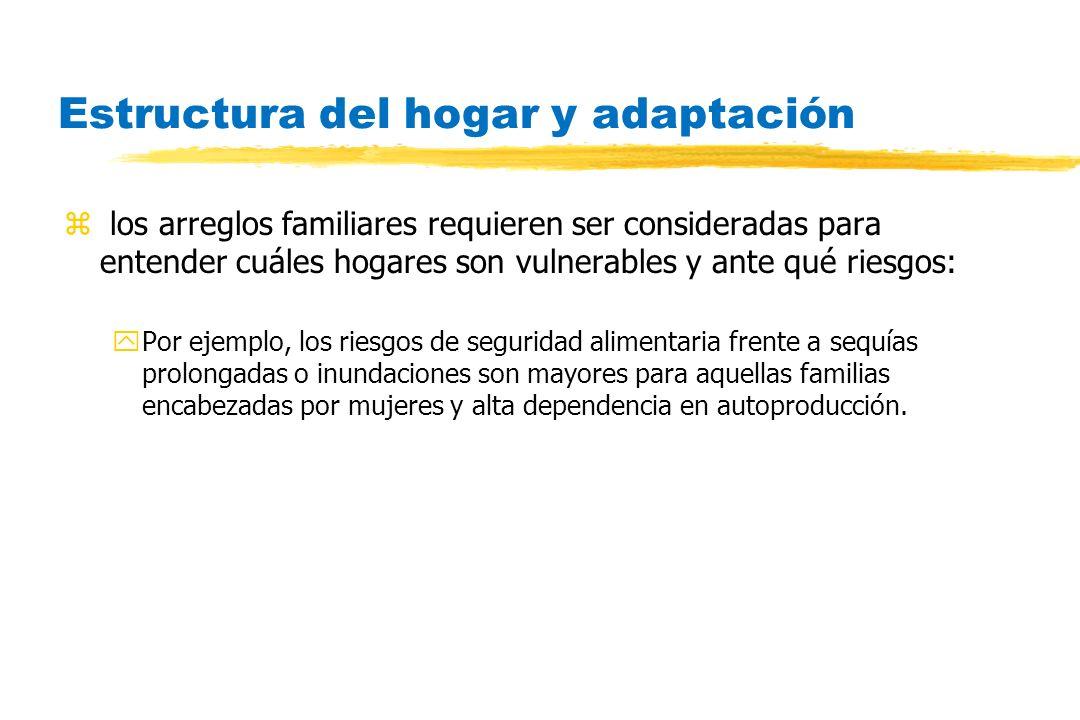 Estructura del hogar y adaptación