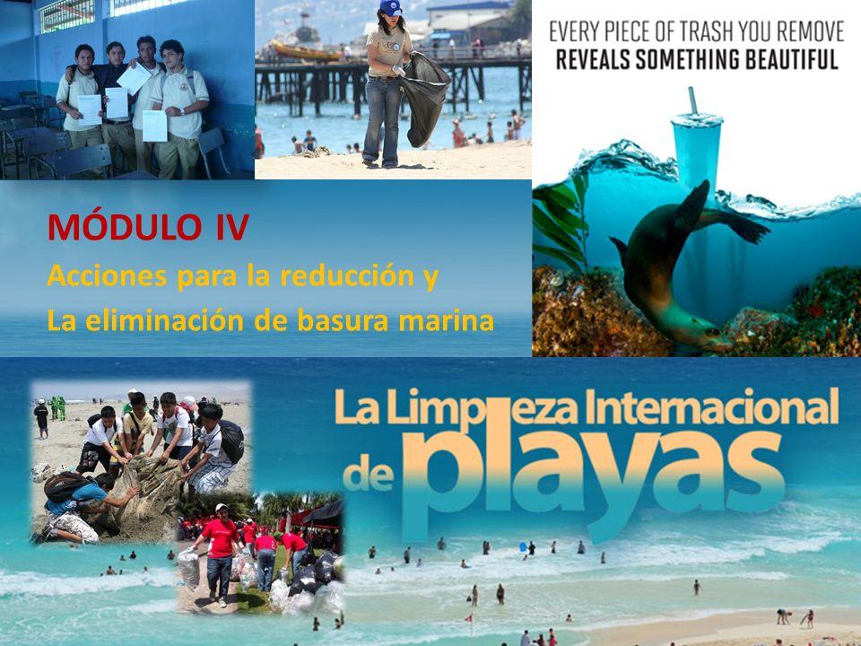 MÓDULO IV Acciones para la reducción y La eliminación de basura marina