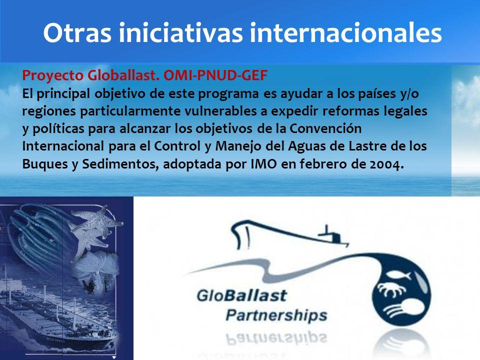 Otras iniciativas internacionales