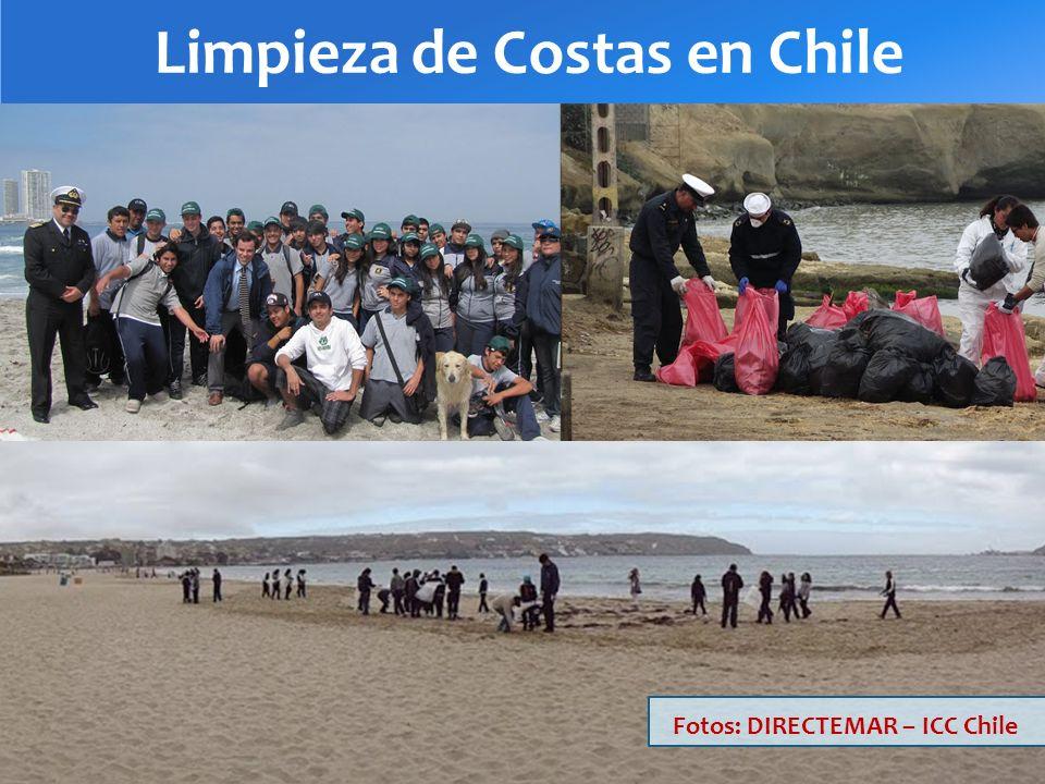 Limpieza de Costas en Chile