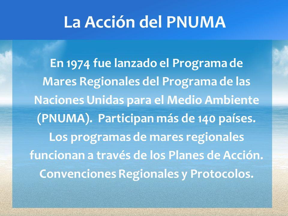 La Acción del PNUMA En 1974 fue lanzado el Programa de