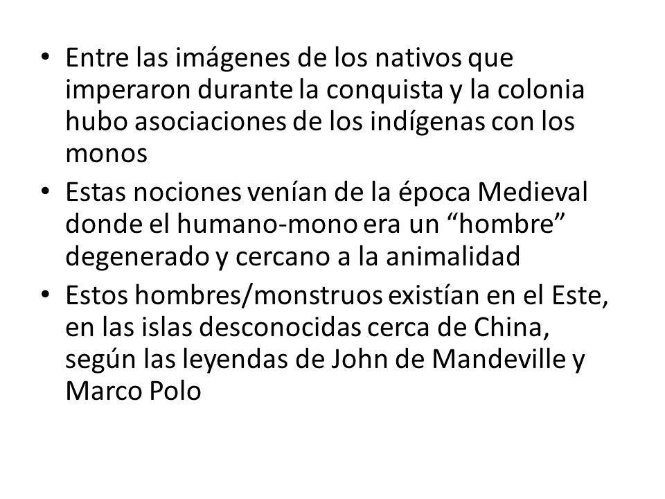 Entre las imágenes de los nativos que imperaron durante la conquista y la colonia hubo asociaciones de los indígenas con los monos