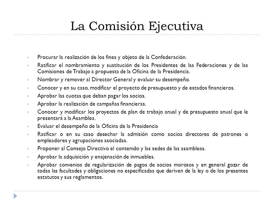 La Comisión Ejecutiva Procurar la realización de los fines y objeto de la Confederación.