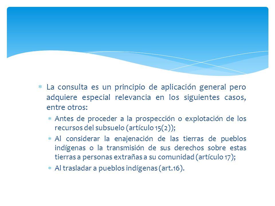 La consulta es un principio de aplicación general pero adquiere especial relevancia en los siguientes casos, entre otros: