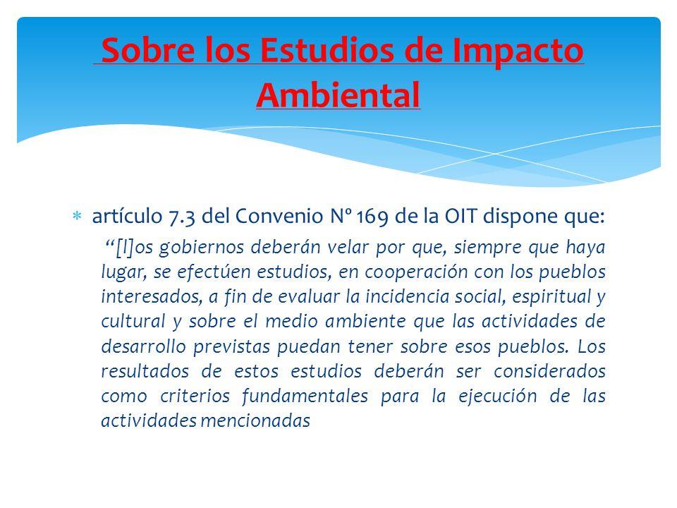 Sobre los Estudios de Impacto Ambiental