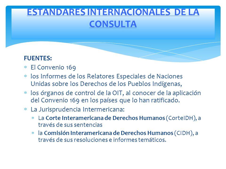 ESTANDARES INTERNACIONALES DE LA CONSULTA
