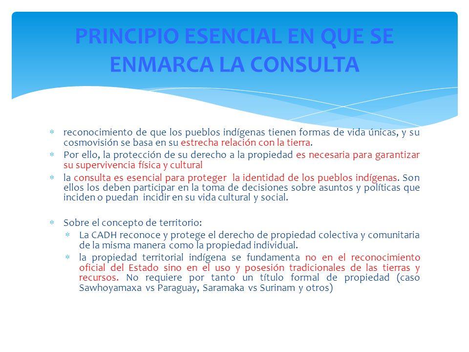 PRINCIPIO ESENCIAL EN QUE SE ENMARCA LA CONSULTA