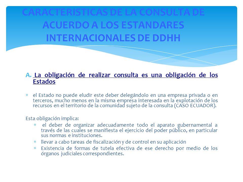 CARACTERISTICAS DE LA CONSULTA DE ACUERDO A LOS ESTANDARES INTERNACIONALES DE DDHH