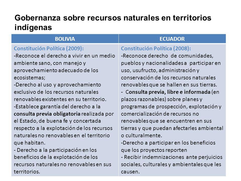 Gobernanza sobre recursos naturales en territorios indígenas