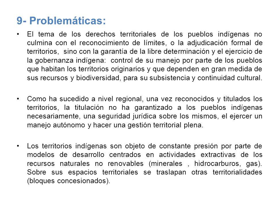 9- Problemáticas: