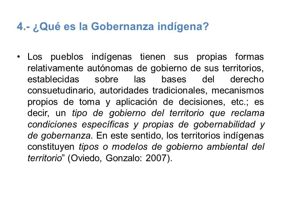 4.- ¿Qué es la Gobernanza indígena