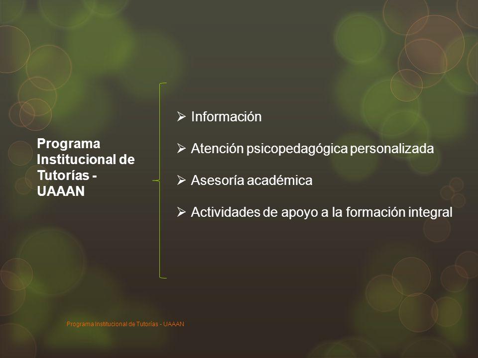 Atención psicopedagógica personalizada Asesoría académica