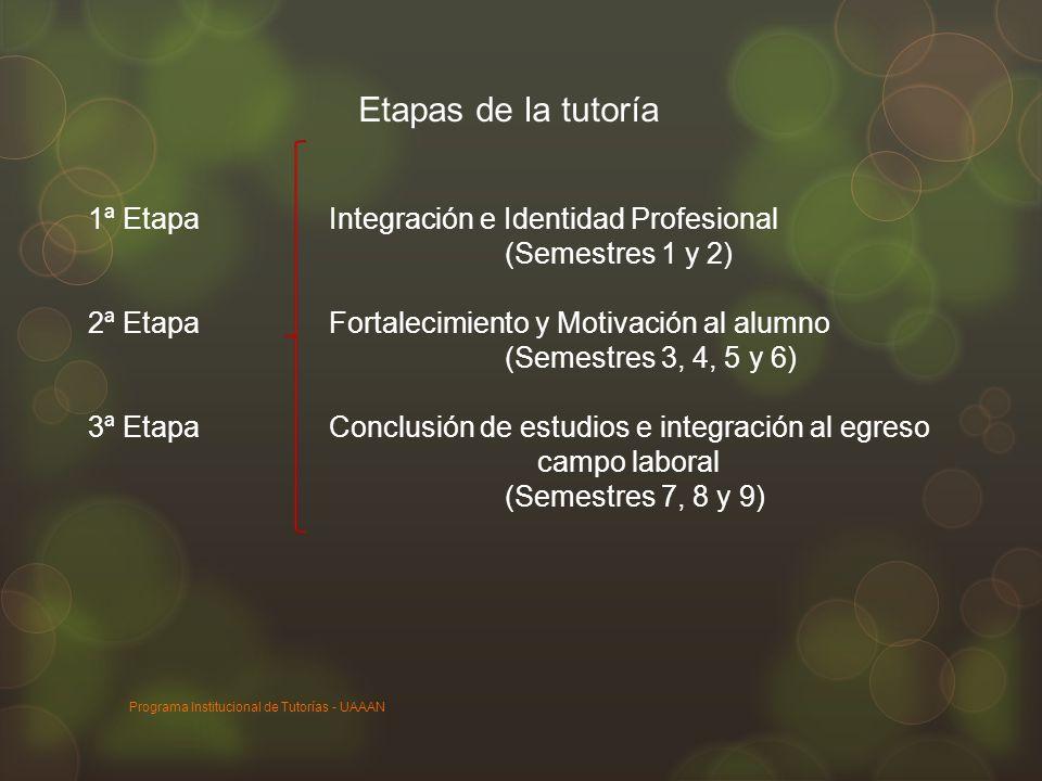 Etapas de la tutoría 1ª Etapa Integración e Identidad Profesional