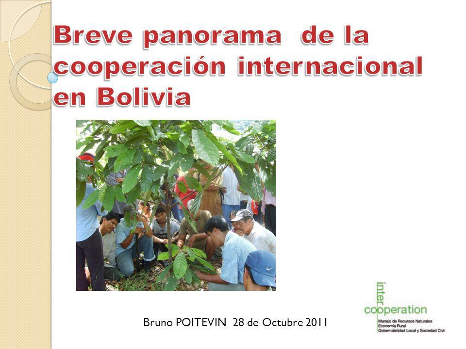 Breve panorama de la cooperación internacional en Bolivia