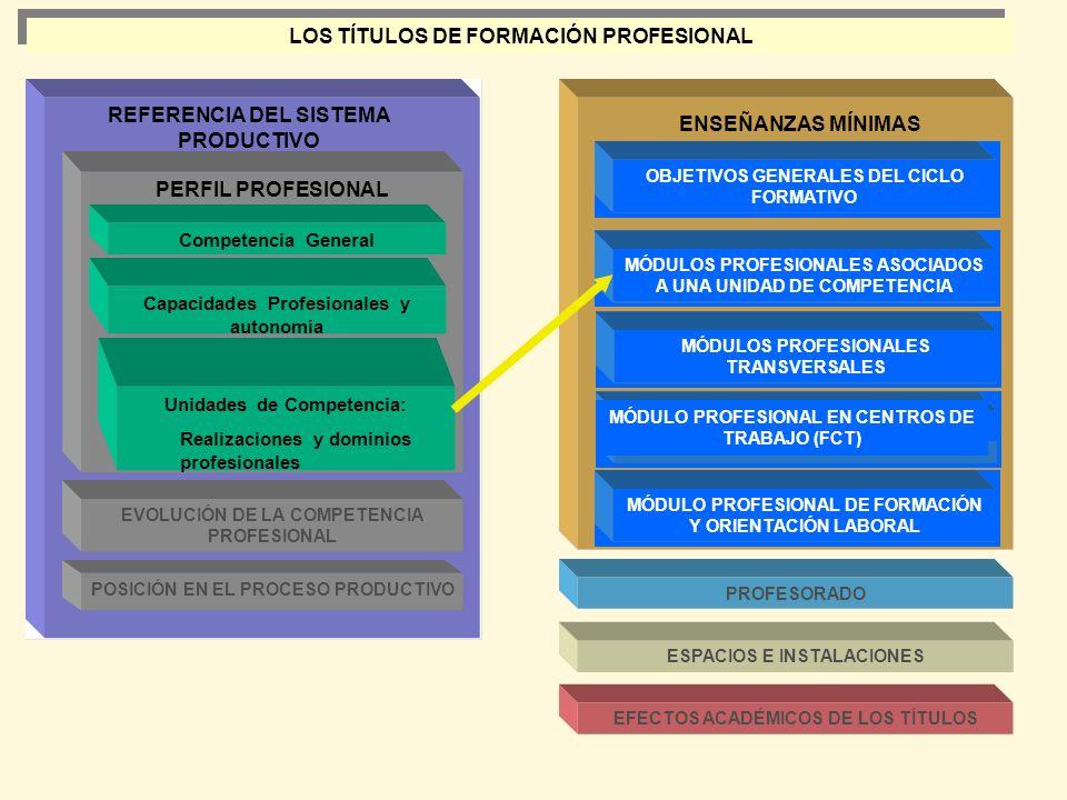 LOS TÍTULOS DE FORMACIÓN PROFESIONAL REFERENCIA DEL SISTEMA PRODUCTIVO