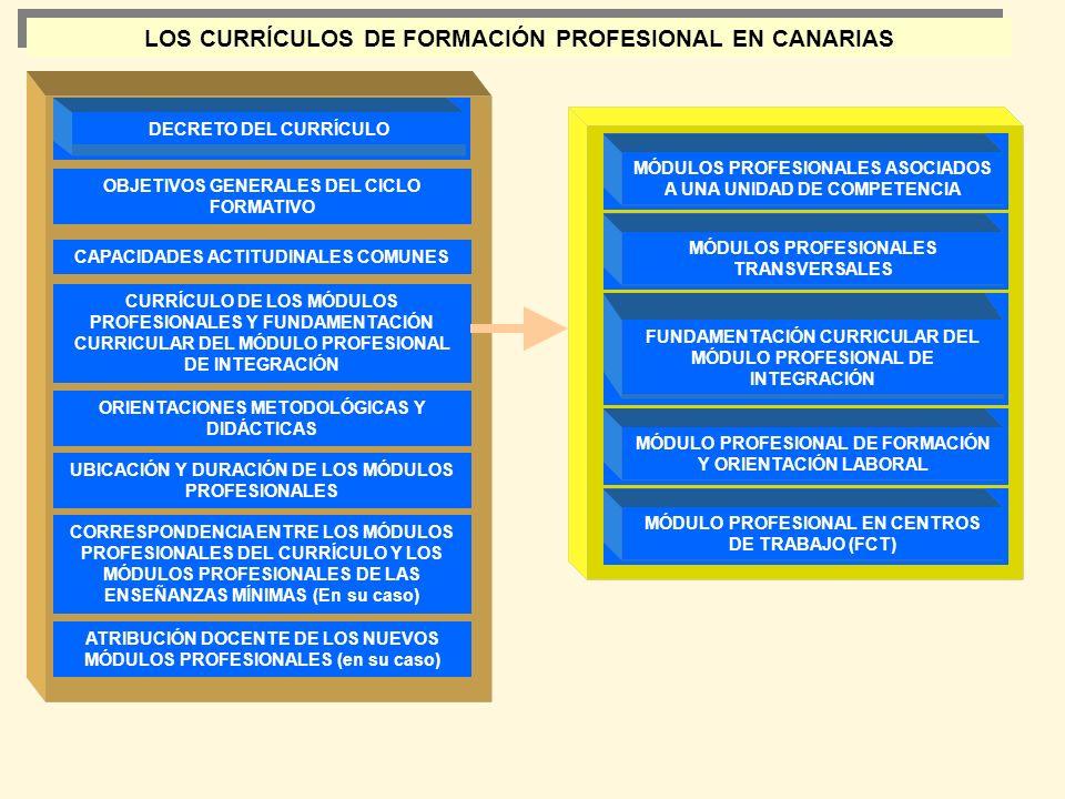 LOS CURRÍCULOS DE FORMACIÓN PROFESIONAL EN CANARIAS
