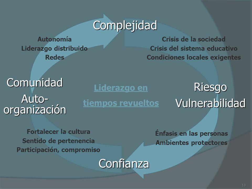 Complejidad Confianza Comunidad Riesgo Auto-organización