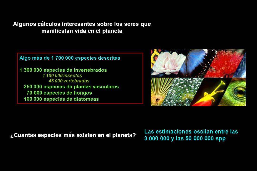 Las estimaciones oscilan entre las 3 000 000 y las 50 000 000 spp