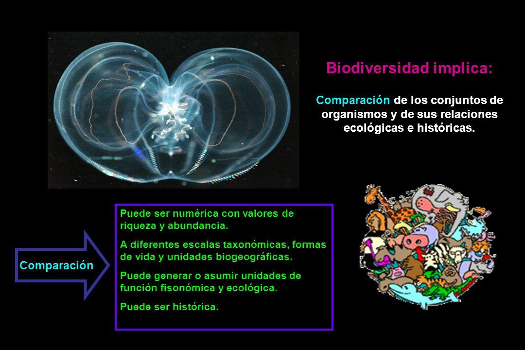 Biodiversidad implica: