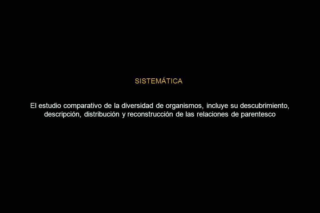 SISTEMÁTICA