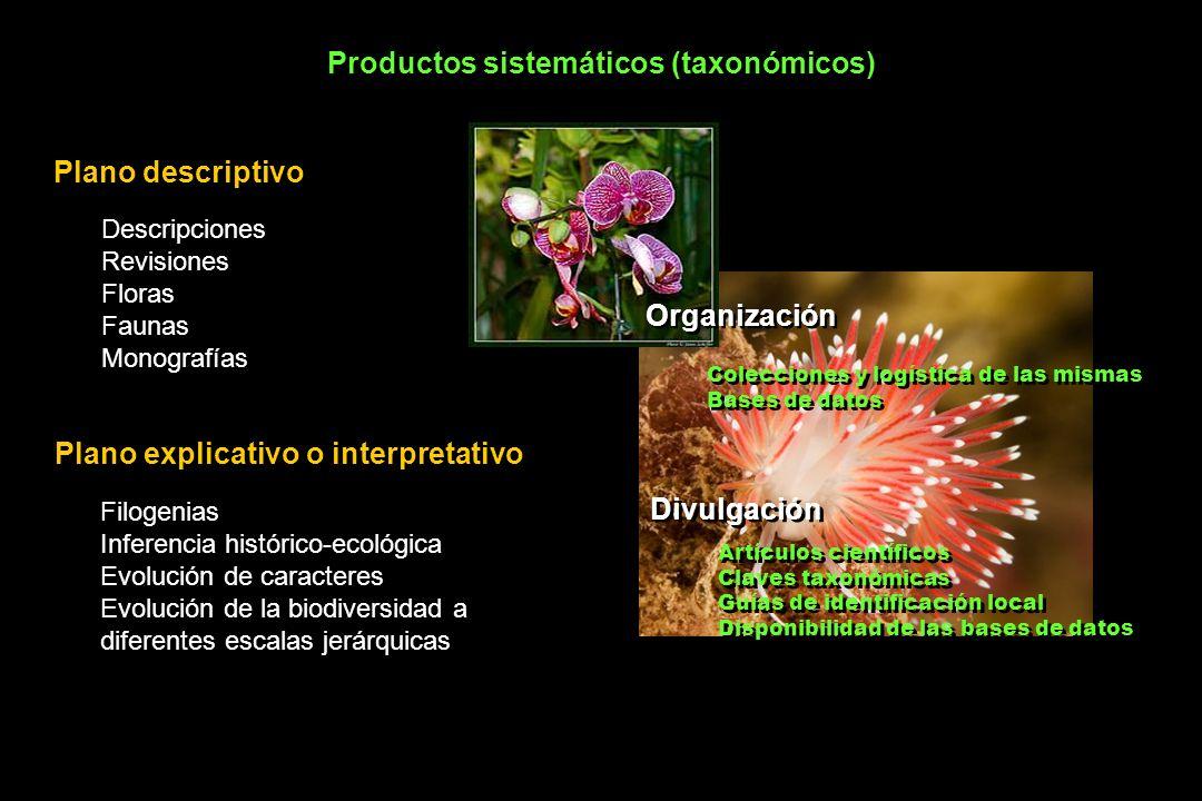 Productos sistemáticos (taxonómicos)