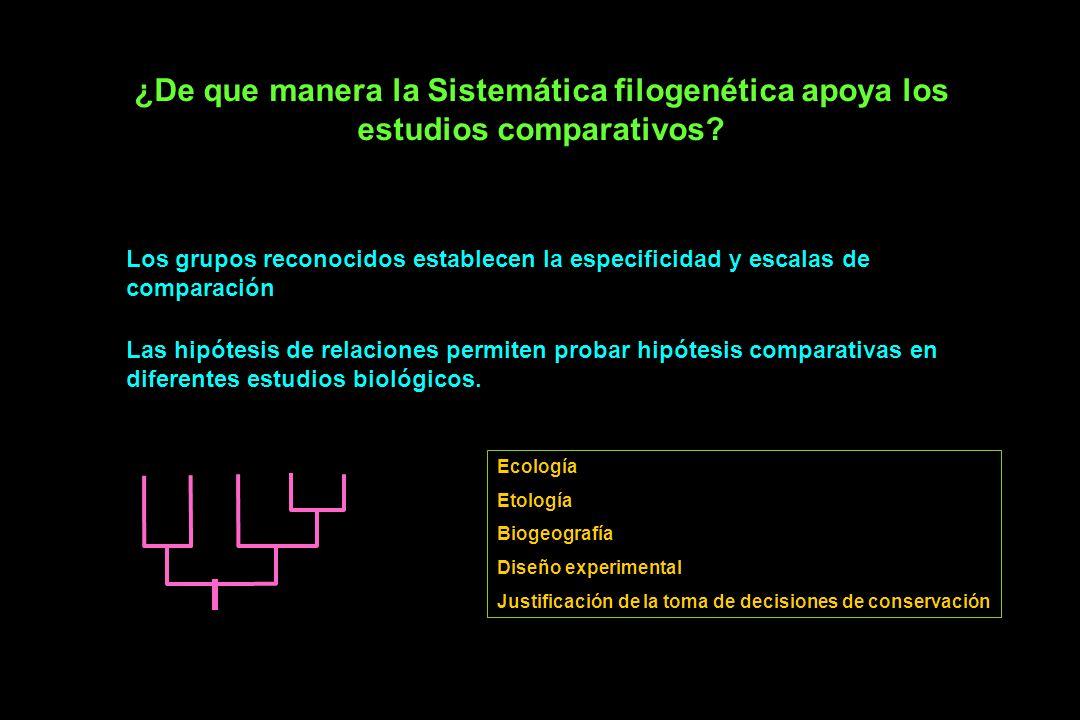 ¿De que manera la Sistemática filogenética apoya los estudios comparativos