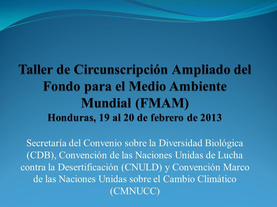 Taller de Circunscripción Ampliado del Fondo para el Medio Ambiente Mundial (FMAM) Honduras, 19 al 20 de febrero de 2013