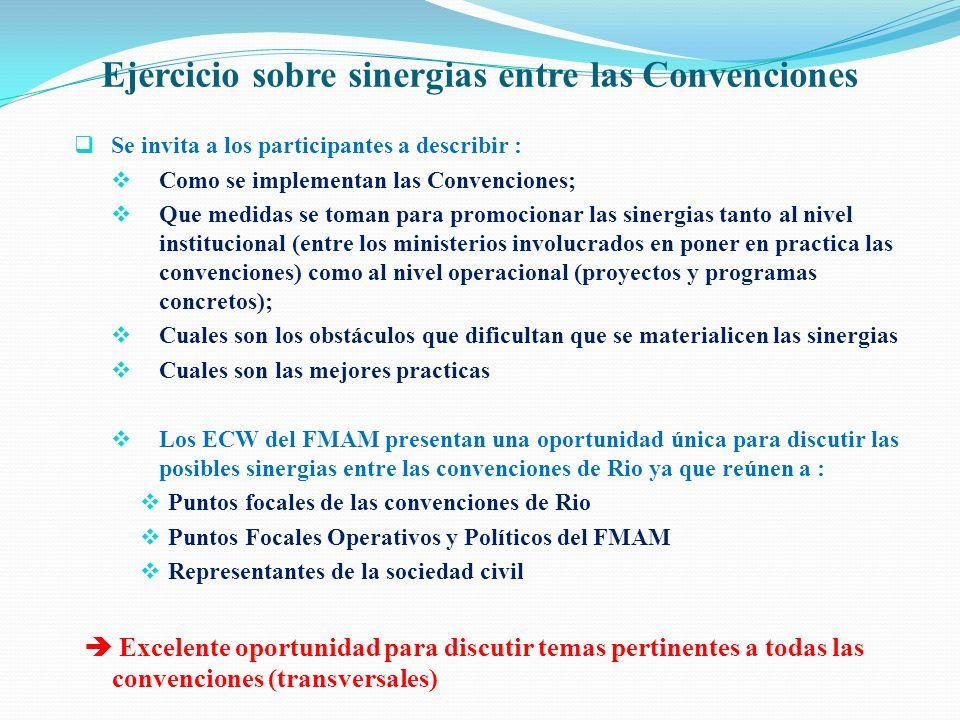 Ejercicio sobre sinergias entre las Convenciones