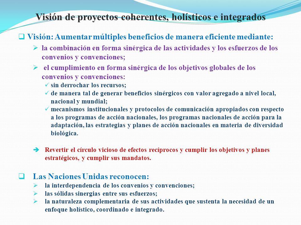Visión de proyectos coherentes, holísticos e integrados