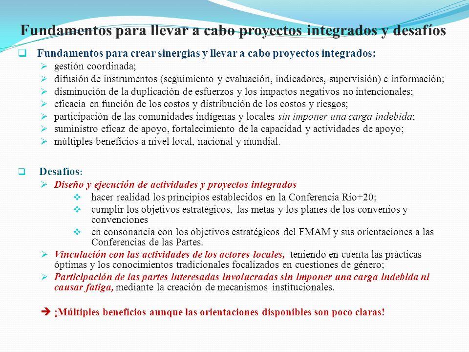 Fundamentos para llevar a cabo proyectos integrados y desafíos