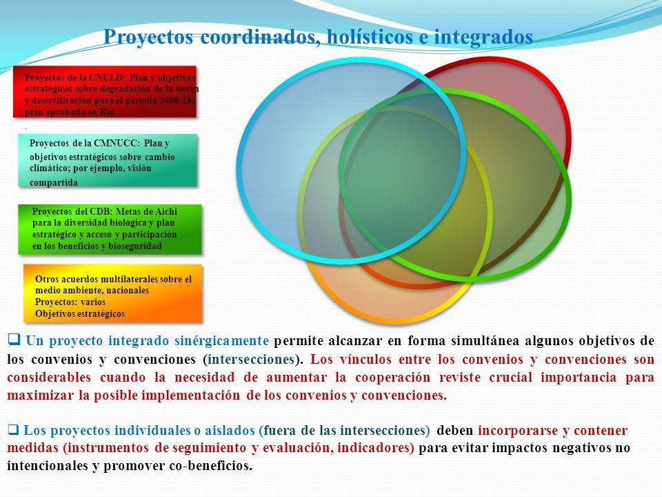 Proyectos coordinados, holísticos e integrados