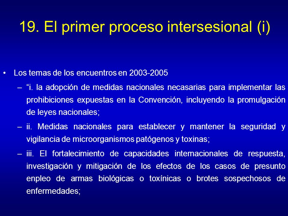 19. El primer proceso intersesional (i)