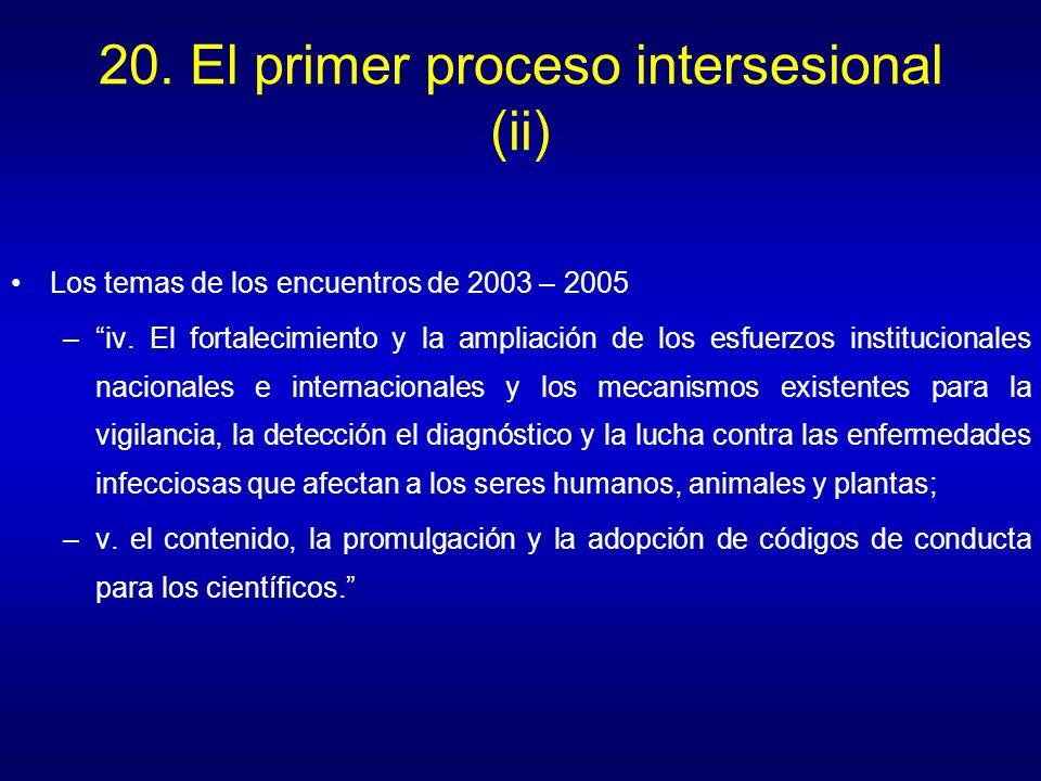 20. El primer proceso intersesional (ii)
