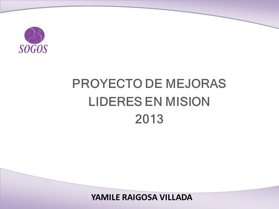 PROYECTO DE MEJORAS LIDERES EN MISION 2013