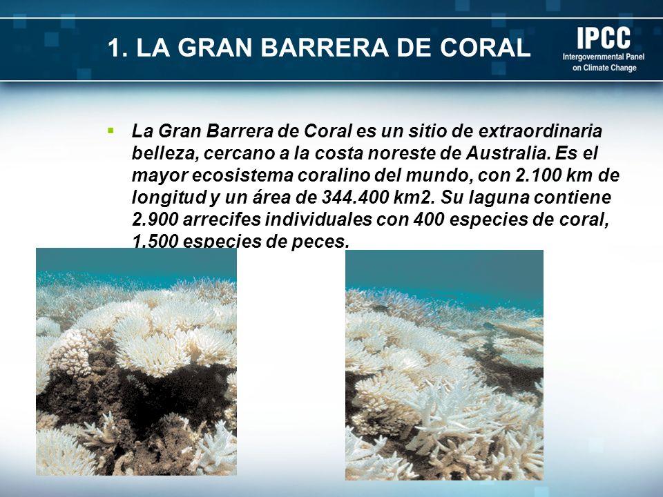 1. LA GRAN BARRERA DE CORAL