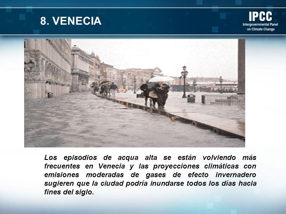 8. VENECIA