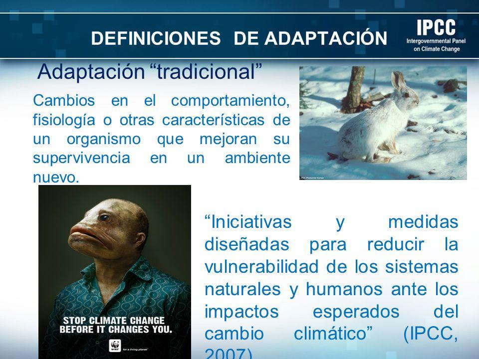 DEFINICIONES DE ADAPTACIÓN