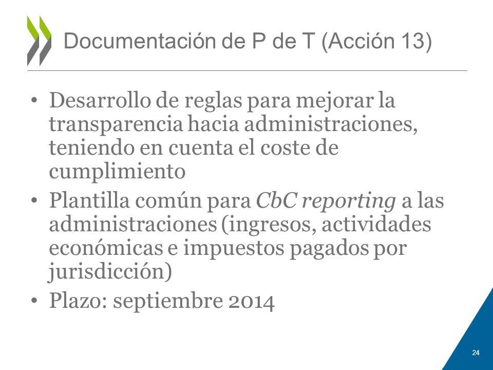 Documentación de P de T (Acción 13)