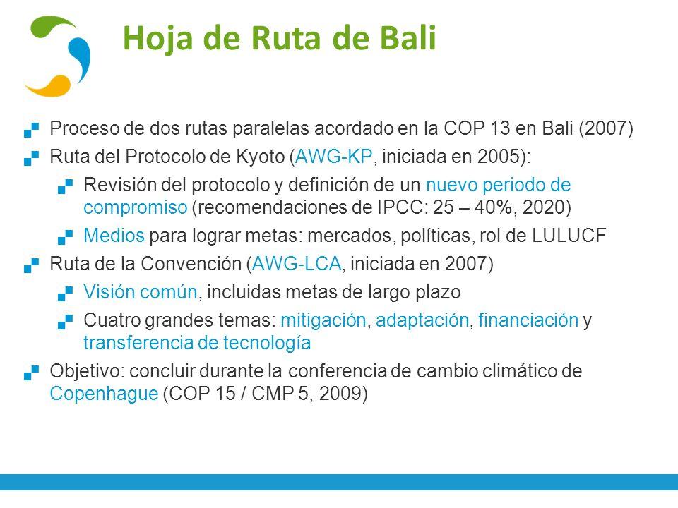 Hoja de Ruta de Bali Proceso de dos rutas paralelas acordado en la COP 13 en Bali (2007) Ruta del Protocolo de Kyoto (AWG-KP, iniciada en 2005):