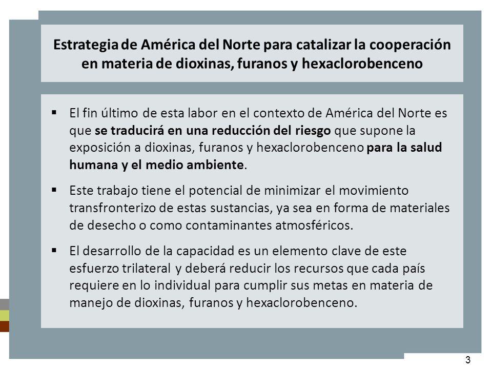 Estrategia de América del Norte para catalizar la cooperación en materia de dioxinas, furanos y hexaclorobenceno