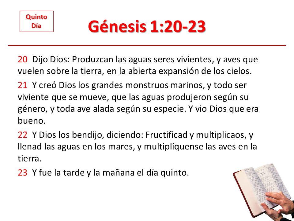 Génesis 1:20-23 Quinto. Día.