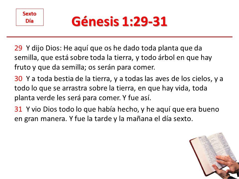 Génesis 1:29-31 Sexto. Día.