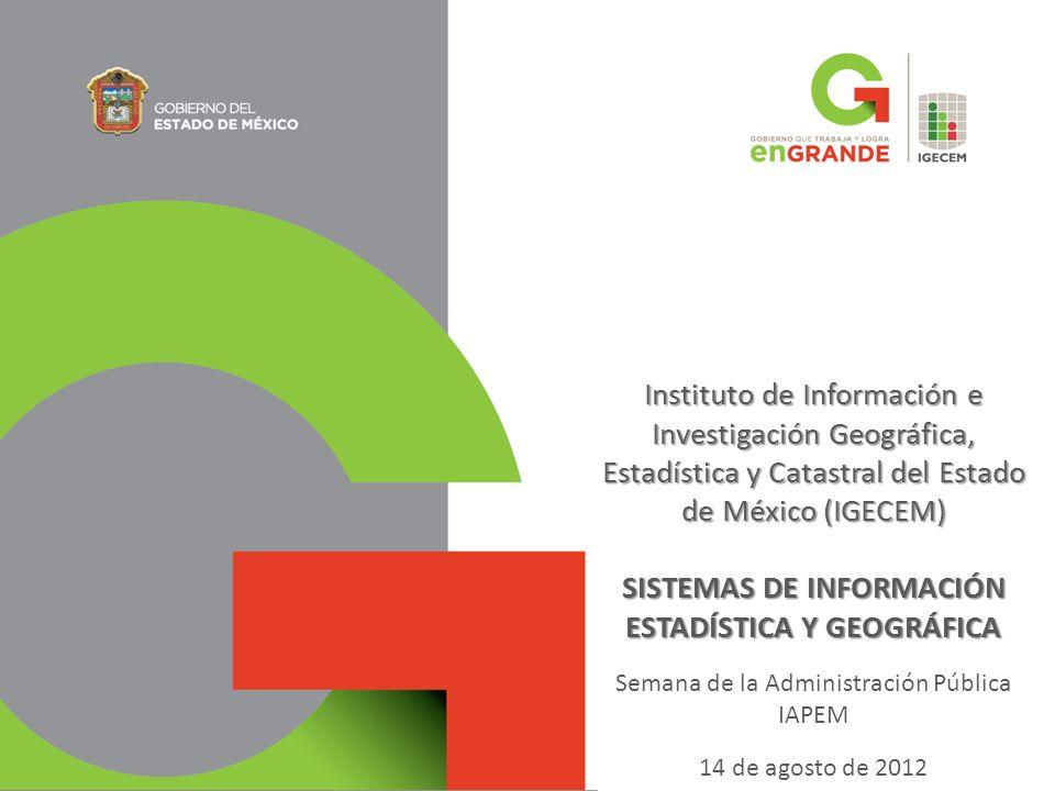 SISTEMAS DE INFORMACIÓN ESTADÍSTICA Y GEOGRÁFICA
