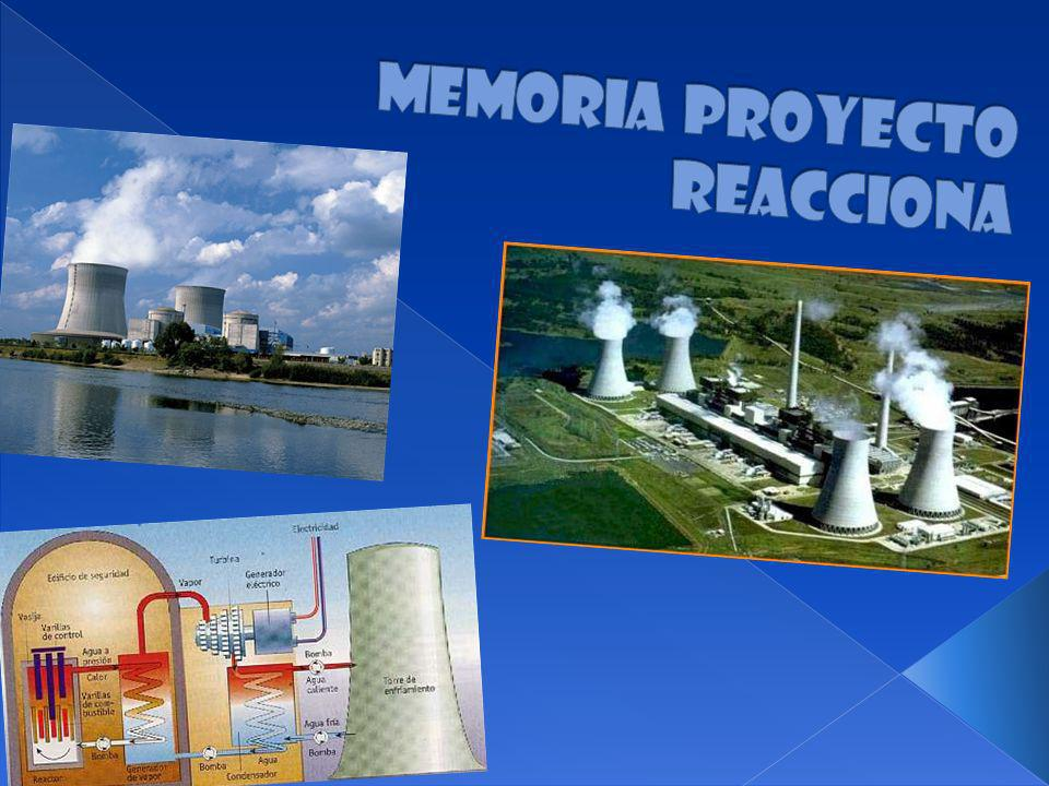 Memoria Proyecto Reacciona