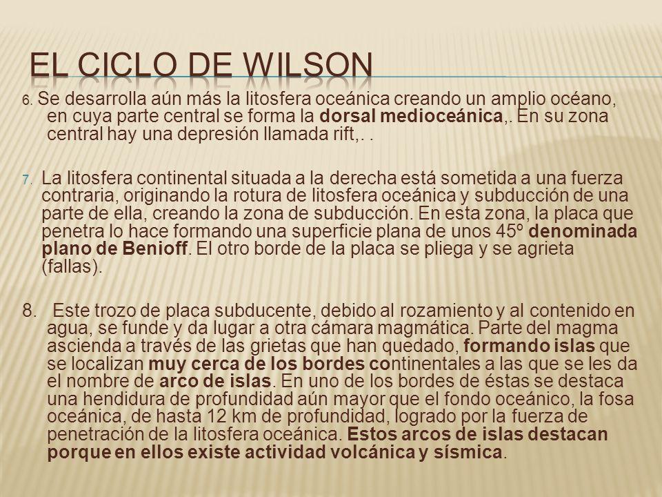 El ciclo de wilson