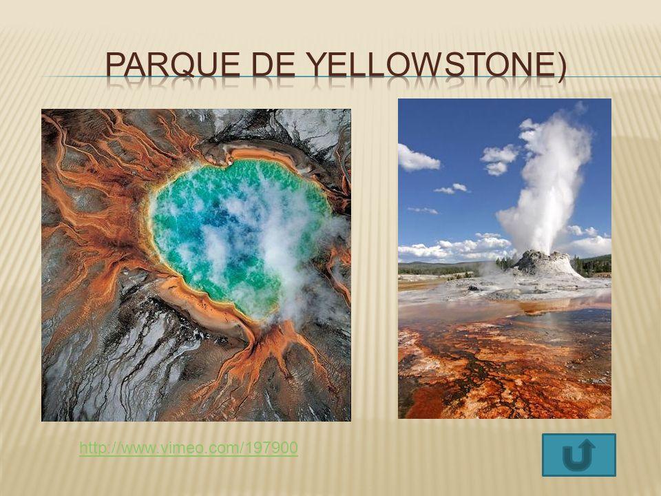 Parque de Yellowstone)